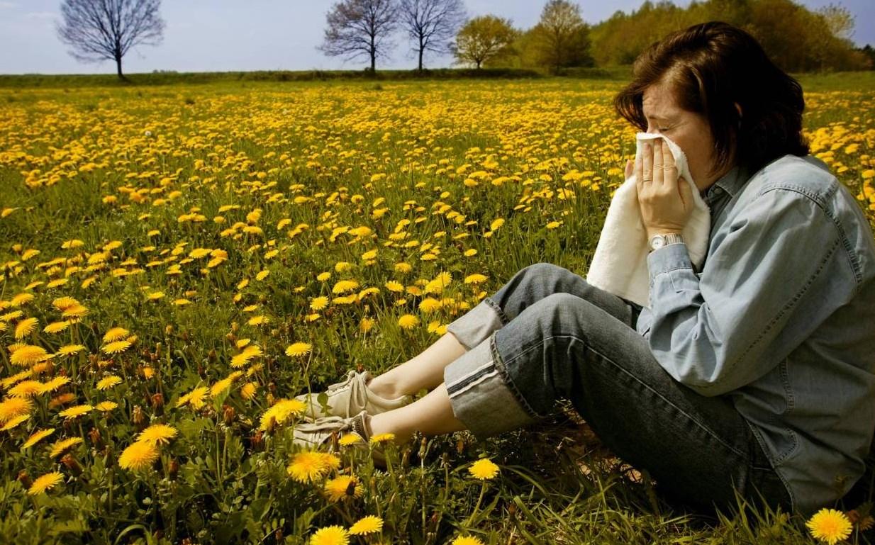 allergicheskij kashel' u vzroslogo tsvety